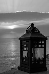 197 (Codeugur) Tags: day akçay ayvalık lake mavi natural water karaağaç blackwhite beach leaf sea weather todayphoto cunda digital ship sky summer sunset outside pose animal canon macro rain wine new ege life blue love turkey