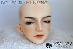 IMG_2871 (Meanae) Tags: measbjdsalon commission bjd abjd faceup dollfamilyh linfeng sd normalskin