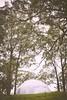 Metamorphosis2017_by_spygel_0083 (spygel) Tags: metamorphosis doof aussiebushdoof bushdoof doofers psytrance party prog trance techno glitch electronicdancemusic idm dubstep dub bass goodtimes loose lifestyle seqld queensland australia dancing dance doofer hitech bush