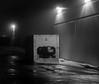 Generator in the Fog - B&W (Alex Wilson Photography) Tags: fog foggy light trail trails long exposure longexposure shutter open street streets road roads generator power generators tree trees greenery green bush bushes flash bright white loud quiet cool