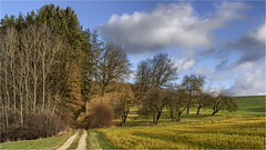 Streuobstwiese (Robbi Metz) Tags: deutschland germany bayern bavaria stauden landscape trees forest sky clouds colors canoneos