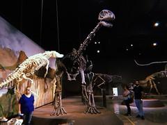 passado presente (meeeeeeeeeel) Tags: dark museudehistórianatural museum museu dinosaurs dinossauros hujiapp hujicam huji