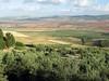 Fertile Plain (D-Stanley) Tags: archaeological dougga tunisia olive