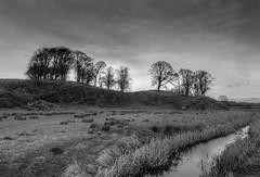 Burton, Wirral (Rachael Webster UK) Tags: burton wirral blackandwhite monochrome longexposure longexposurephotography fltofb