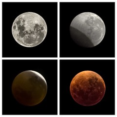Total Lunar Eclipse Collection in Review - January 2018 - 5 of 5 - Barton - ACT - Australia - 20180131 and 20180201 (MomentsForZen) Tags: red orange eclipse lunareclipse fullmoon dark night sky square diptic exifeditor photosync anycrop lynkeos lightroom cfv50c 501cm hasselblad mfz momentsforzen barton australiancapitalterritory australia au