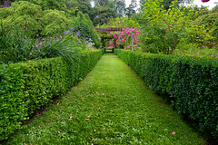 English garden (Pat Charles) Tags: england unitedkingdom uk buckinghamshire leadinglines rose roses garden hedge manicure manicured outside outdoors outdoor countryside nikon travel tourism