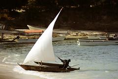 NKINAI (vitofonte) Tags: nkinai dhow barca boat vela sail playa beach pescadores fishermen kizimkazi zanzibar tanzania africa oceano ocean oceanoindico naturaleza nature natura natureza vitofonte