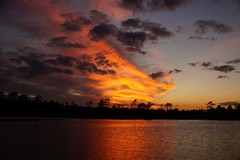 Golden Sunset (Jim Atkins Sr) Tags: sunset cloudsstormssunsetssunrises spectacularsunsetsandsunrises clouds cloudscape northcarolina northwestcreek reflections sony sonyphotographing sonya58