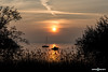 Sunset @ Bardolino (NRG SHOT) Tags: tramonto sunset lagodigarda lago garda benaco lake see twilight nrgshot cloud clouds nuvole panorama landscape nikon albero cielo acqua paesaggio bardolino nikkor