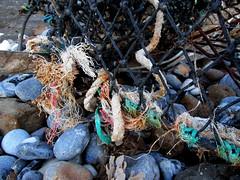 Cage texture (Briana Brennan) Tags: texture textures closeup beach coast coastal cage net lobster cliff pebble pebbles colour woven sea natural manmade