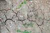Soil (Mabelín Santos) Tags: cracks soil dryseasoninpanama dry