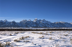 grand teton national park (bpwilby) Tags: 100speed 35mm chrome film filmfuji fuji fujiprovia100f fujifilm grandtetonnationalpark nikon nikonf100 provia slide slidefilm tetons usa wy winter wyoming e6 fujichrome positive