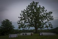 Randor Hunt Weddings (jscottcatering) Tags: randor hunt wedding landscape ceremony setup venue