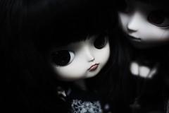 (hauntiing) Tags: pullip laura dal tezca doll dolls pullips toy toys