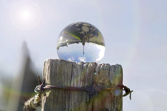The upside down fence ;o) (Elisafox22 slowly catching up ;o)) Tags: elisafox22 sony ilca77m2 100mmf28 macro macrolens telemacro sunlight hff fencedfriday fence fencefriday fencepost wire rusted barbedwire wood wooden crystal crystalsphere refraction upsidedown clouds sun sky lightflare outdoors elisaliddell©2018