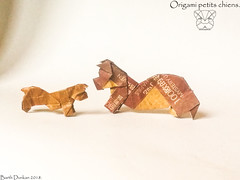 Origami petits chiens - Barth Dunkan. (Magic Fingaz) Tags: anjing barthdunkan chien chó dog hond hund köpek origami perro pies пас пес собака หมา 개 犬 狗