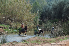 Passing the Ford (farahleon) Tags: ouzoud morocco maroc