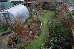Looking Down on the Back Garden - February 2018 (basswulf) Tags: polytunnel backgarden d40 1855mmf3556g lenstagged unmodified 32 image:ratio=32 permissions:licence=c 20180218 201802 3008x2000 garden normcres oxford england uk lookingdownonthegarden