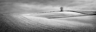 Therfield panorama