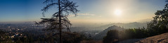 A Smokey Day in the City of Angels (Scott..?) Tags: griffithpark griffith park la losangeles hollywood smoke thomasfire forestfire california wildfire fire