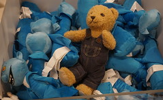 teddy having a blue day! (spelio) Tags: ikea testing new camera a6000 sony jan 2018 shopping shoppingnotbuying justlooking sets lighting available decoration design