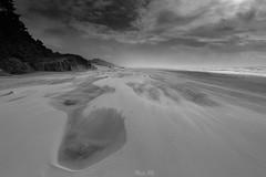 Windy (Masako Metz) Tags: beach windy sky clouds ocean sea nature landscape seascape sand blackandwhite monochrome oregon coast pacific northwest usa america weather winter walk