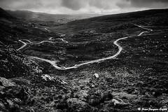 0598 - Healy Pass, Versant Est, Irlande, 1976 (ikaune) Tags: nb bw noiretblanc blackandwhite ikaune argentic argentique monochrome nikon healypass irlande ireland