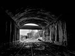 Dudley Port Low Level (Jason_Hood) Tags: disused abandoned railway railroad