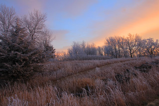 Frosty Sunrise . . .