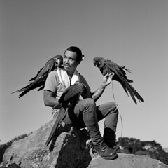The Birdman of Corona Heights (Tpstearns) Tags: film tlr rolleiflex 28d monochrome mediumformat blackandwhite bw trix hc110 6x6 square
