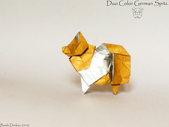 Duo Color German Spitz - Barth Dunkan. (Magic Fingaz) Tags: anjing barthdunkan chien chó dog hond hund köpek origami perro pies пас пес собака หมา 개 犬 狗
