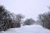 Snowy road (DameBoudicca) Tags: sweden sverige schweden suecia suède svezia スウェーデン snow snö schnee nieve neige neve 雪 road väg weg route camino via 道 winter vinter invierno hiver inverno 冬 white vit weis blanco blanc bianco 白
