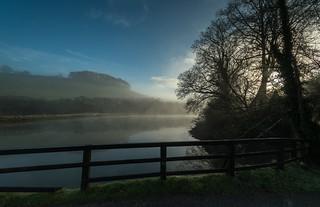 Misty Morning on Looe River.