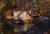 the rocks speak if we are listening (johngpt) Tags: rock fujinonxf55200mmf3548rlmois lantern ishidōrō sasebojapanesegarden winter bushes stream water trees fujifilmxt1 places abqbotanicgardens fence ~~fencefriday~~ hff