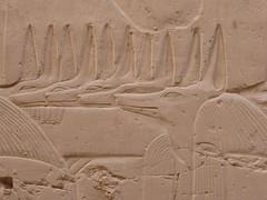 Jackal Headed Deities, Karnak (Aidan McRae Thomson) Tags: karnak temple luxor egypt ancient egyptian relief