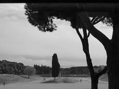 Circus Maximus (3 of 3) (jimsawthat) Tags: blackandwhite circusmaximus chariotraces ancient ruin rome urban park italy