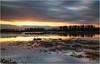 Hochwasser - Rhine in flood (He Ro.) Tags: 2018 deutschland germany highwater hochwasser rhein urdenbacherkämpe winter reflections sunset water naturschutzgebiet naturereserve rhineinflood flood longexposure leebigstopper nrw nordrheinwestfalen