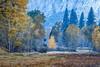 Meadow Haze (Kirk Lougheed) Tags: california sentinelmeadow usa unitedstates yosemite yosemitenationalpark yosemitevalley autumn fall forest haze landscape meadow nationalpark outdoor park sky smoke tree