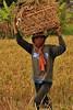 IMG_0472 - копия (Kalina1966) Tags: bali island indonesia people rice field