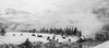 Black and White Grazing (maureen.elliott) Tags: blackandwhite blackandwhitephoto landscape bison yellowstonepark 7dwf winter steam mist hillside nature geyserbasin grazing herd