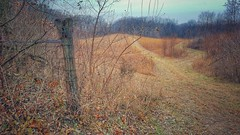 the paths beyond....(HFF) (BillsExplorations) Tags: grasslands fence fencefriday old bluffs mississippiriver albanymounds historicsite indians hopewellcultural mounds burialmounds grave path illinois illinoisdeptofnaturalresources