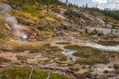 Yellowstone Landscape (Thomas  Johnson Photography) Tags: outside outdoors canon digital 40d beautiful scenic yellowstone wyoming yellowstonenationalpark thomasjohnsonphotography ©thomasjohnsonphotography ©2018thomasjohnsonphotography steam hot pool pools landscape blue bluewater geothermal geothermalactivity sulfur hillside trees pine rocks steaming erupt erupting nationalpark grass tree