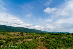 Over the hills ... (Imrul Kayes) Tags: jaintiapurupazila sylhetdivision bangladesh jainta hills tea estate sylhet wideangle canon efs 1022mm travel blue sky