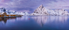 Moment of Peace (inkasinclair) Tags: panorama lofoten norway sakrisoy winter reflection water mountains robuer snow twighlight landscape peace