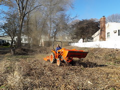 Mike mows the raspberries -- and a puffball (BelmontAcresFarm) Tags: november 2017 mike tractor belmont farm belmontacres puffball spores mower