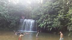 IMG-20171230-WA0017 (chocoenlaweb.com) Tags: chocó chocoenlaweb quibdó turismo colombia pacífico tutunendo naturaleza bahíasolano nuquí saldefrutas cascada ichó