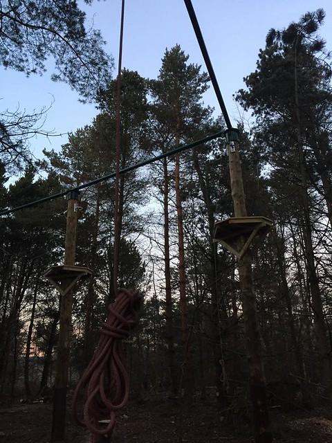 Tree Top Quest Construction