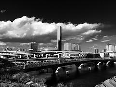 Odaiba, Tokyo (gt223) Tags: modernarchitecture modern bw blackandwhite architecture concrete street city urban bridge tokyo odaiba