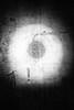 (willy vecchiato) Tags: biancoenero monochrome monocramatico blackandwhite abstract astratto occhio eye conceptual concettuale noir dark darker human real fake fuji x100s oscura oscuro obscure