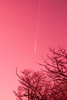 Chemtrails (?) (deauveide) Tags: chemtrails conspiracy conspiranoia surreal bizarre pink abstract abstracto rosa sureal extraño strange dream sueño